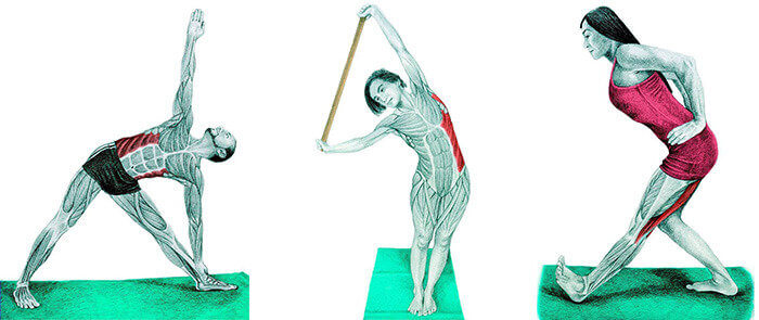 dinamic stretching exercises