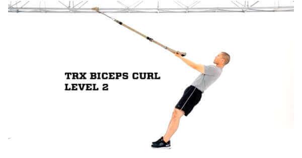 TRX biceps curl