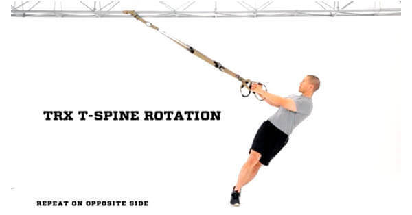 photograph about Printable Trx Workout identify 10 Productive TRX Workouts for Minimal Back again Suffering [printable PDF]