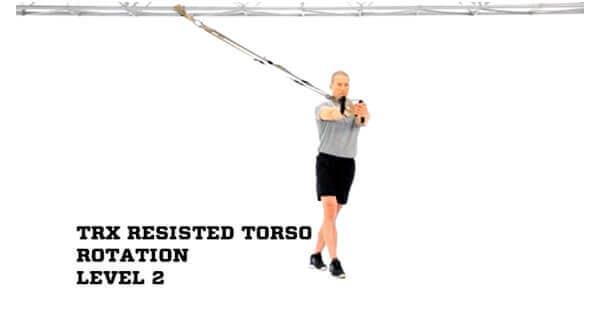 trx torso rotation