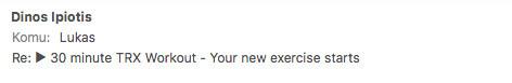 TRX Workout review