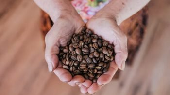 health benefits of coffee beans
